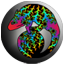 chameleon_logo_small